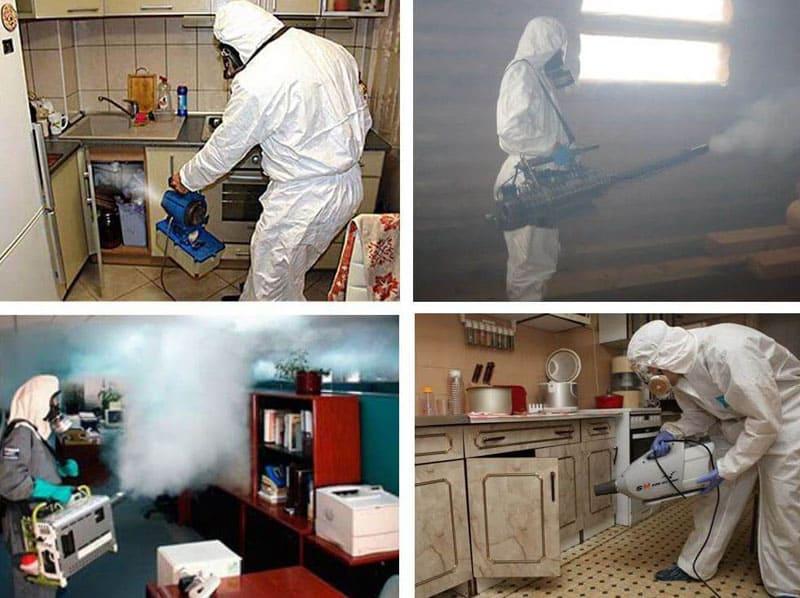 Профессиональная обработка помещений холодным туманом с использованием специальных составов