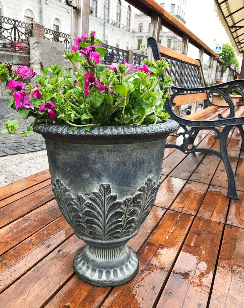 Пластик можно располагать и в тени, и на солнце — стенки горшка удержат влагу внутри, и почва не пересохнет