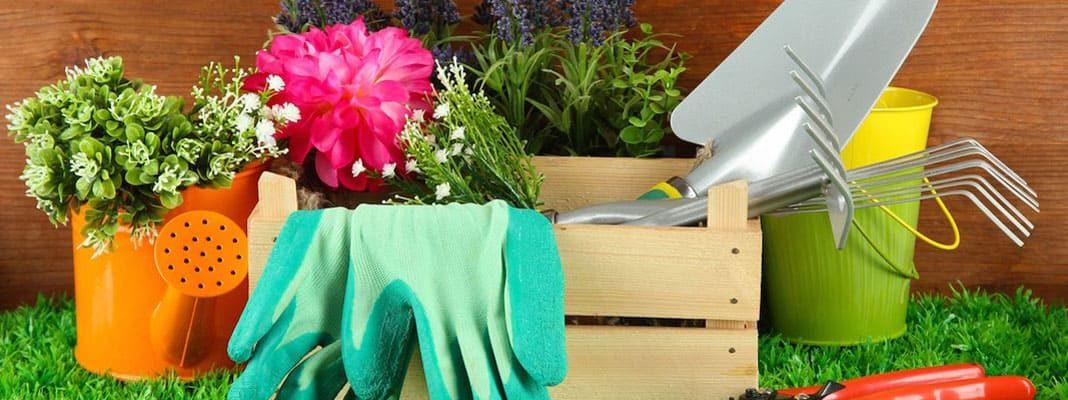 10 садовых инструментов от Алиэкспресс