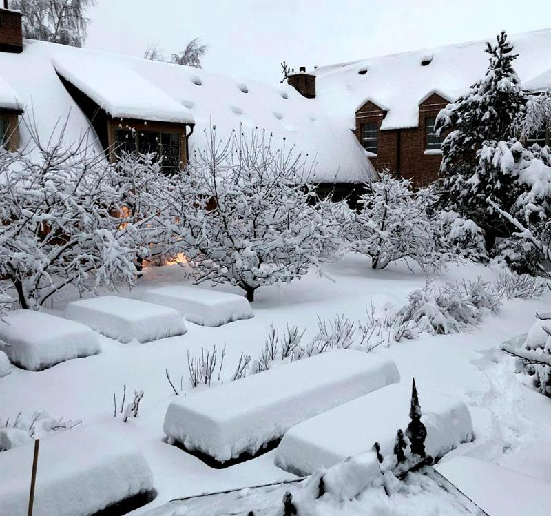 Грядки на заднем дворике зимой напоминают столы, накрытые скатертями к празднику