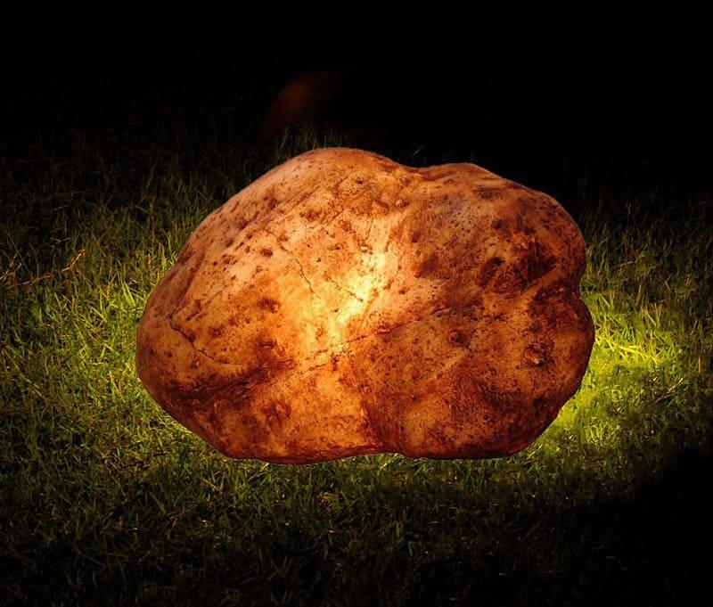 Днём они выглядят как обычные камни, а ночью превращаются в ландшафтные светильники