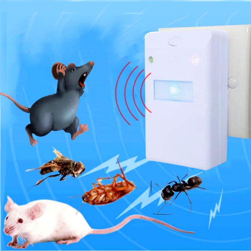 Ультразвук заставит мышей покинуть насиженное место