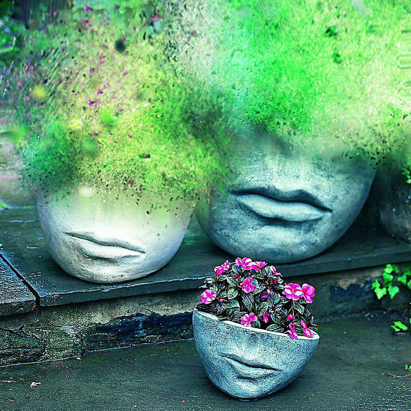 Цветочные вазы и идеи для оформления сада от AliExpress