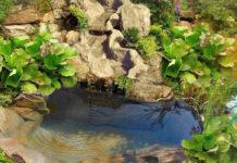Как самому спроектировать и построить пруд на даче