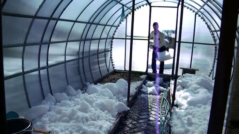 В зимнее время следует следить за объёмом влажного снега на теплице
