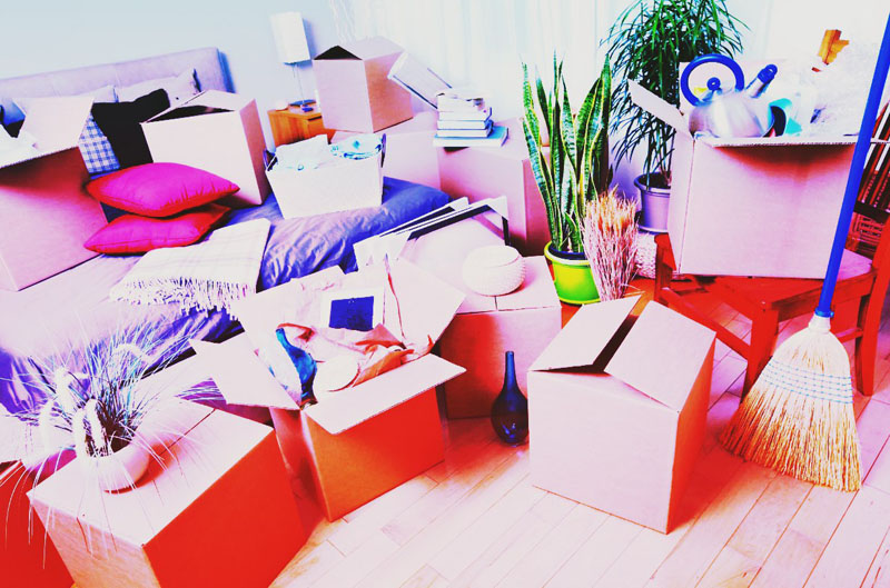 ТОП 7 вещей для переезда с AliExpress