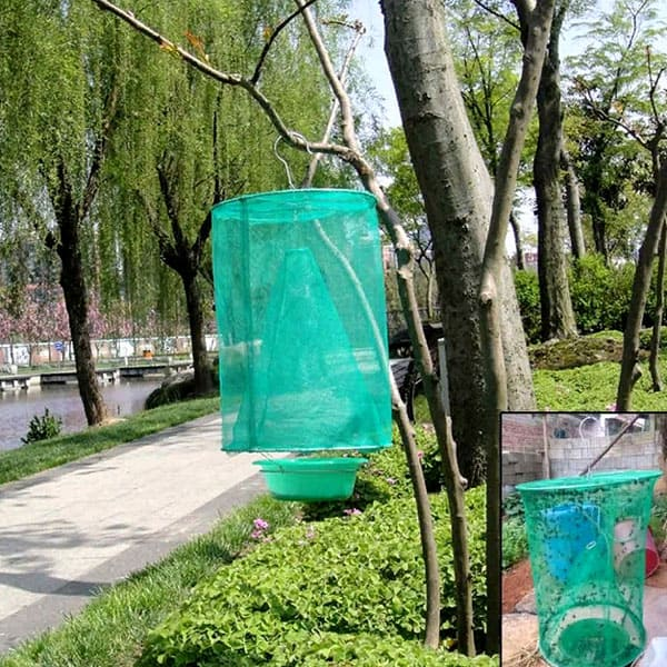 Стоимость сеточки– 245 рублей
