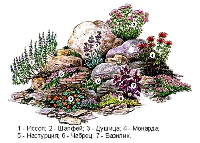 схема альпийской горки картинки