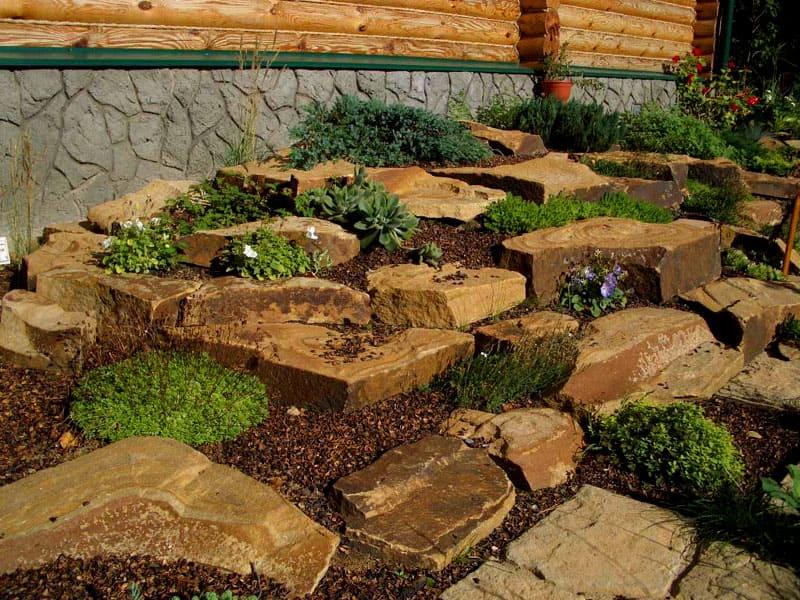 Правильно выбранные и уложенные камни будут отлично смотреться даже с небольшим количеством растений