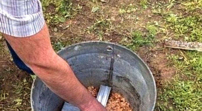 Коптильня горячего копчения своими руками всего за 5 минут