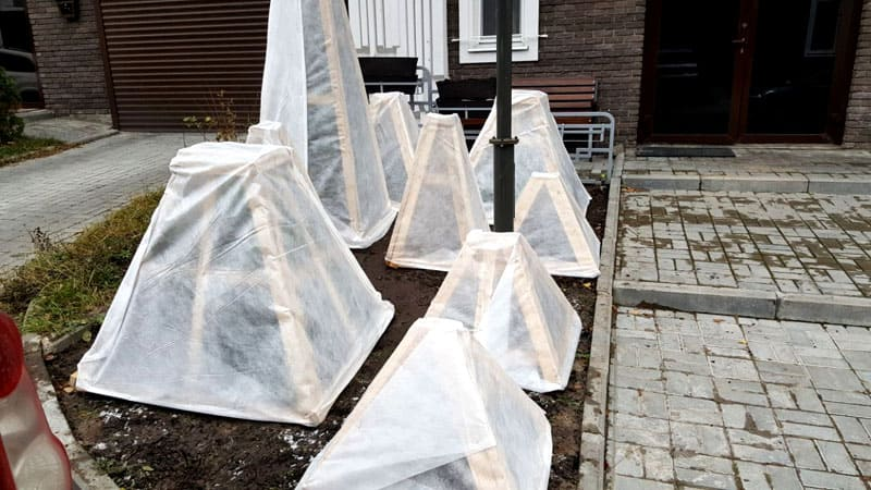 ФОТО: biosad.kz Для капризных культур используйте парники и теплицы. Идеальный вариант – переносные конструкции, которые куполом закрыли бы молодые ростки от непогоды