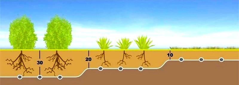 При раскапывании грядки и посадке растений изначально закладываются водные трубы. Оптимальная глубина – от 20 до 30 см