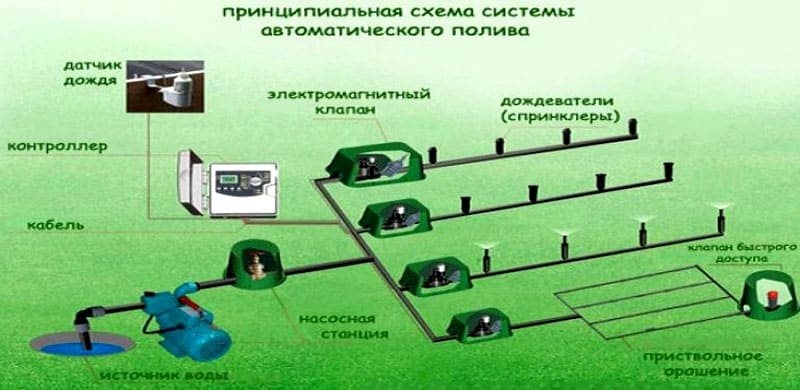 Схема подключения автополива