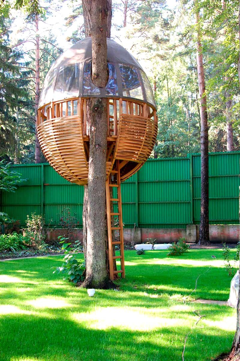 Конструкция в виде яйца была надёжно закреплена на дереве, и может напомнить обычное гнездо