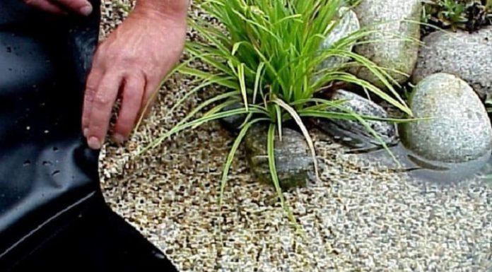 Как правильно выбрать плёнку для пруда с учётом разнообразия видов и  характеристик покрытия