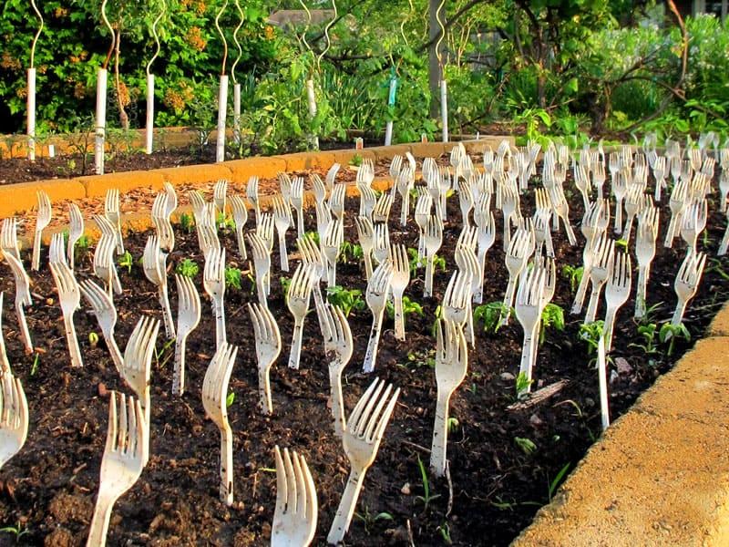 Интересный дизайн поможет сохранить урожай