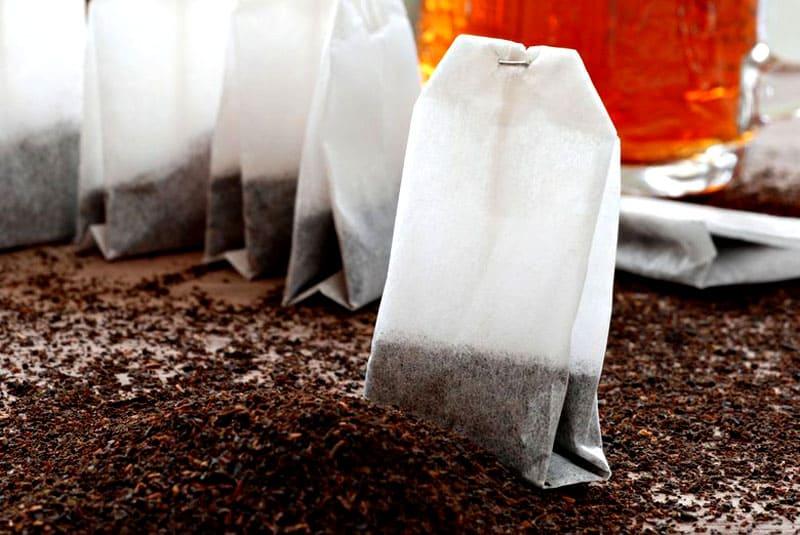 Для защиты рассады от грибка используют разбавленный чай
