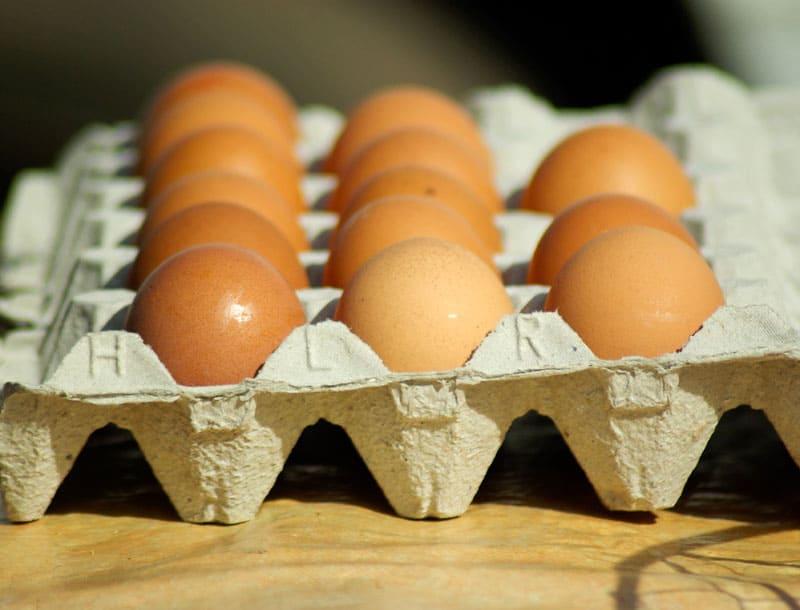 Топ-7 лайфхаков из яичных упаковок