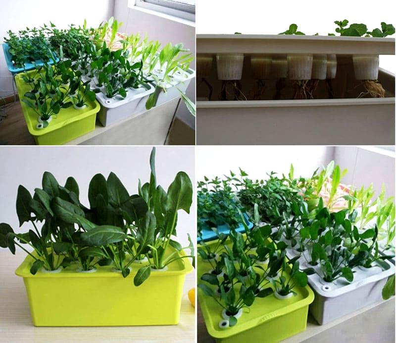Такие питательные наборы позволят вполне качественно вырастить небольшую плантацию