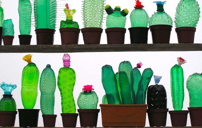Вот такой необычный ряд из декоративных цветов создаст необходимую тень в открытой летней беседке