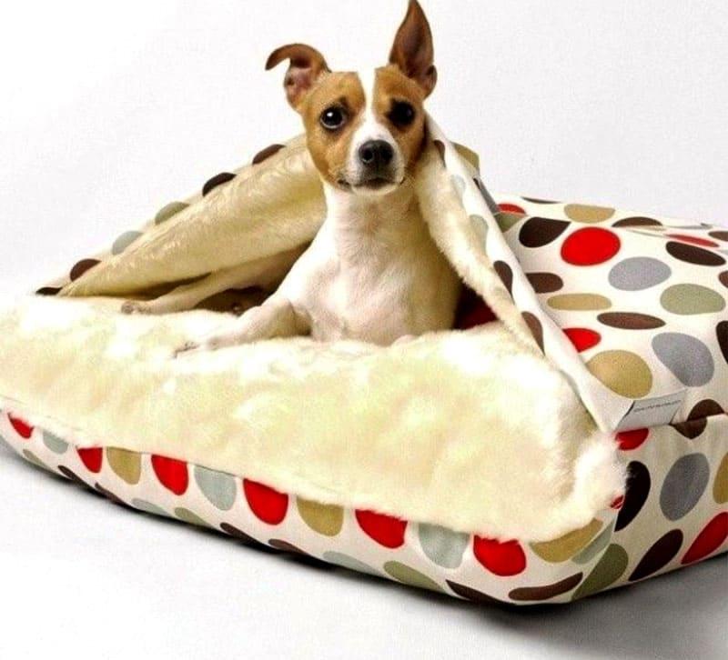 Небольшим гладкошёрстным собачкам намного уютнее находиться в домике или на лежанке с верхним чехлом