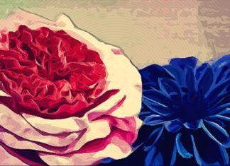 Цветы из изолона своими руками