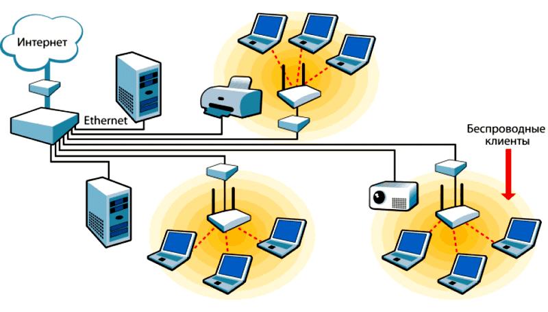 К локальной сети могут быть подключены несколько компьютеров