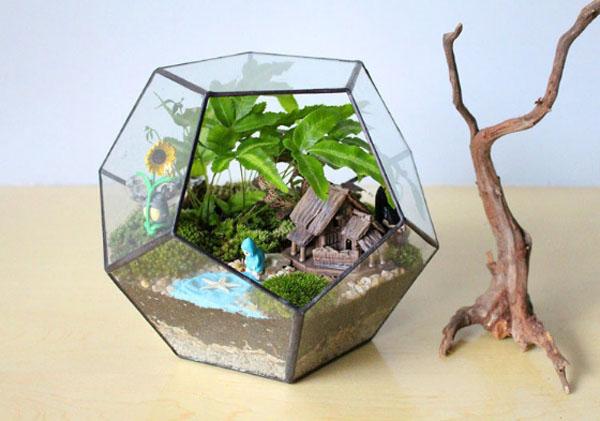 Модная тенденция выращивать крохотные и миниатюрные растения. Профессионалы создают огромные фазенды из десятков таких растений, причём вся «коллекция» помещается на одном подоконнике