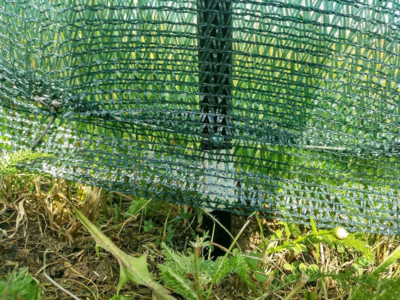 Металлический забор из прутьев