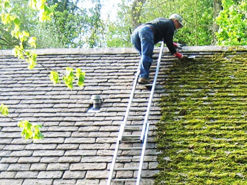 Очистить крышу можно и самостоятельно, удалив с неё всю растительность
