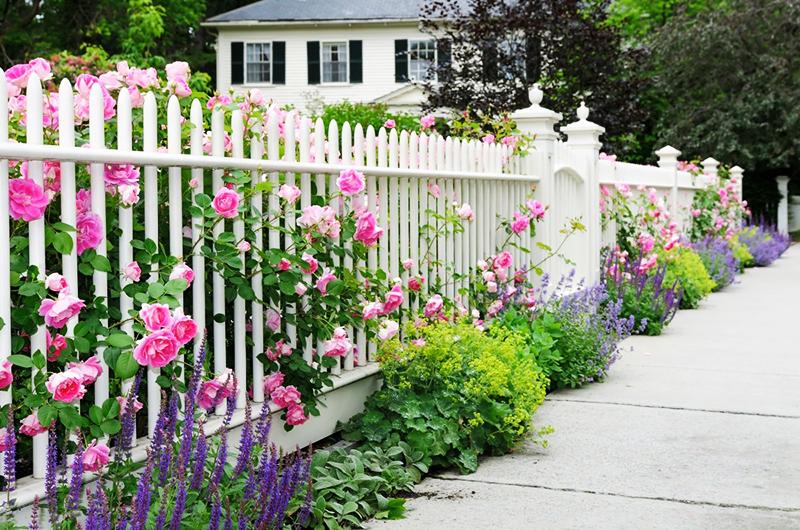Спрячьте это за забором: 10 признаков морально устаревшего участка
