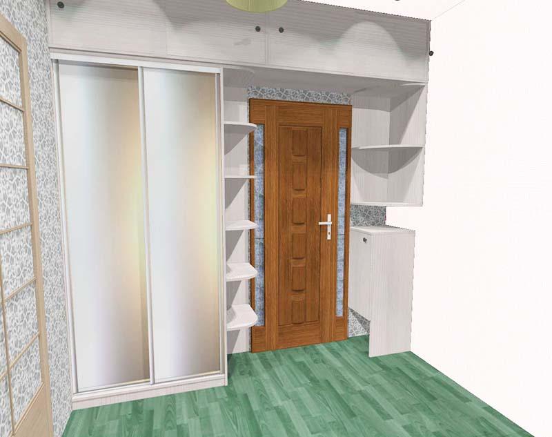 Проект организации систем хранения на свободной стене с дверью