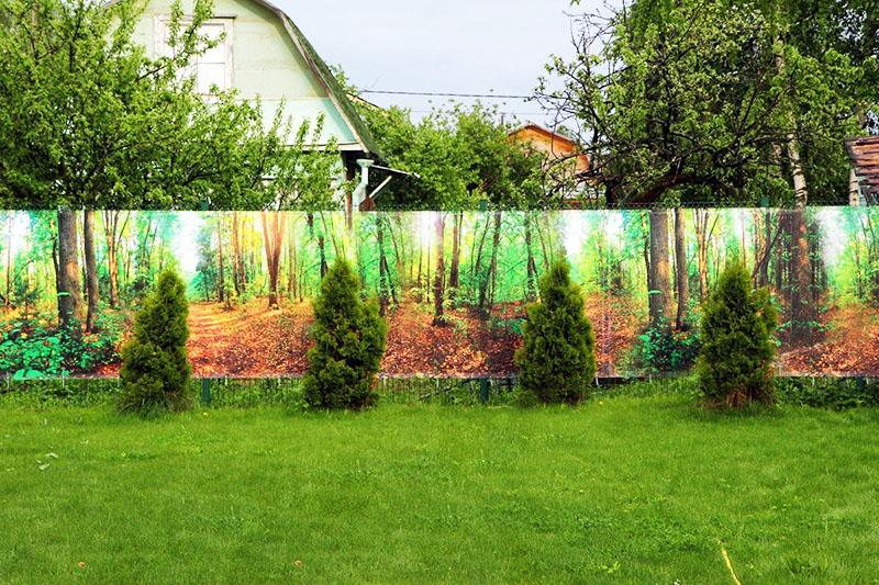 Неплохое сочетание лесного пейзажа и газона