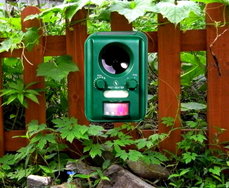 Если собаки посещают огород или участок, целесообразно установить стационарный отпугиватель