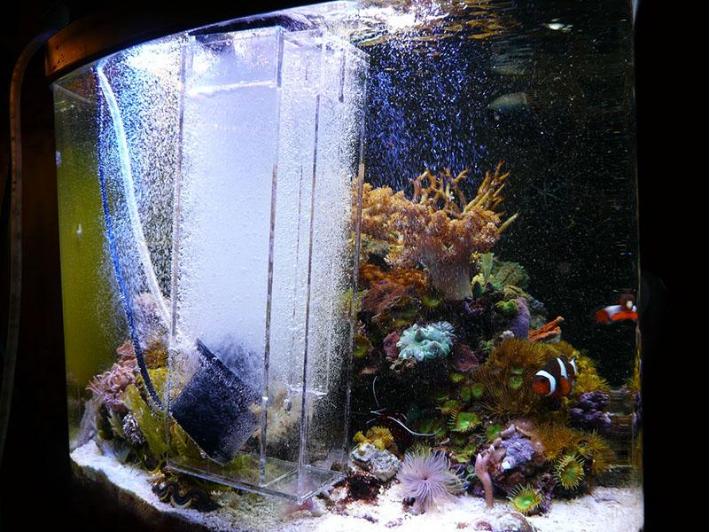 Компрессор для аквариума – вещь необходимая