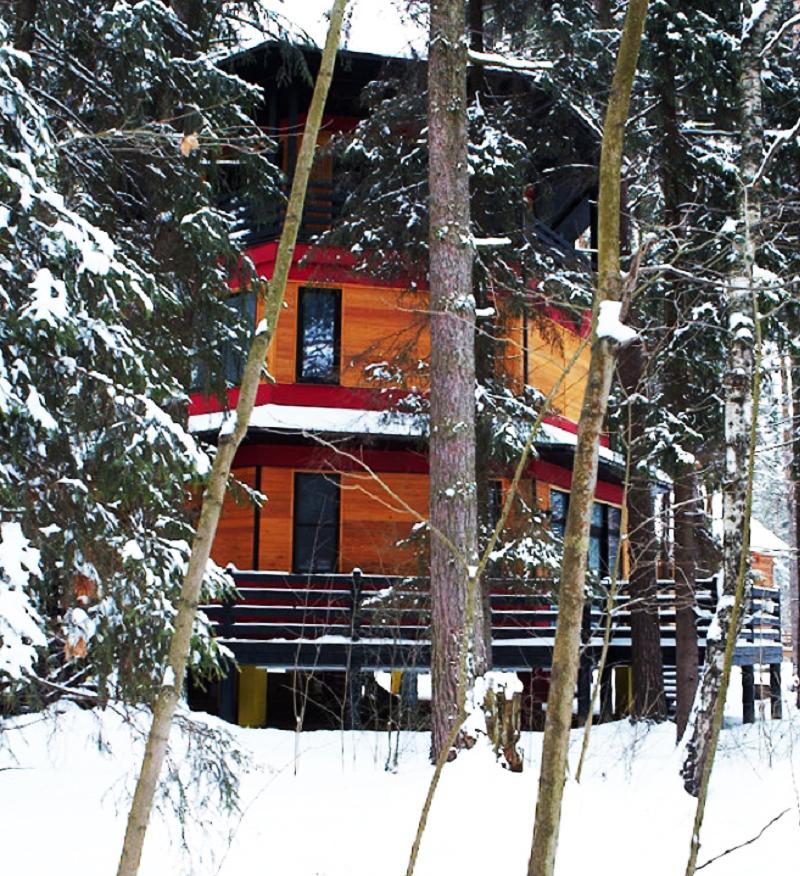 Дом прекрасно вписался в девственный лес
