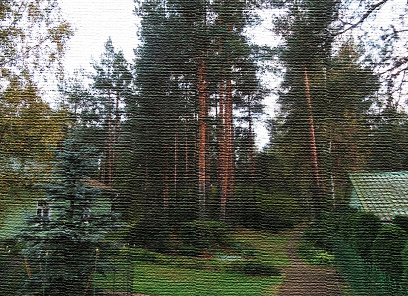 Участок расположен на краю дачного посёлка на границе с лесом