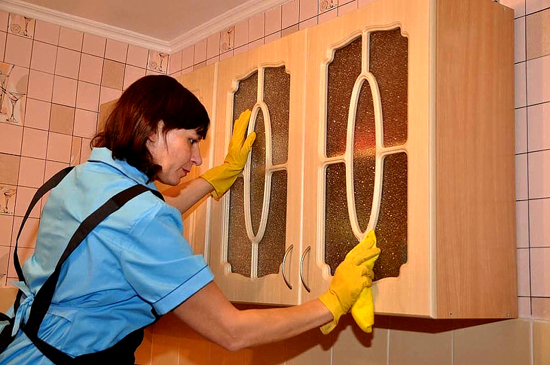 В шкафчике, где завелась моль, нужно сделать генеральную уборку, а потом провести дезинфекцию