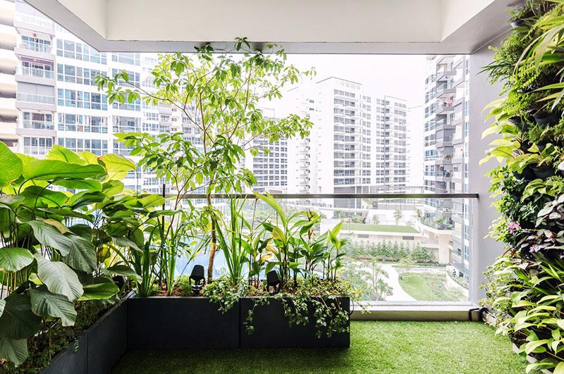 Как создать сад на балконе в середине зимы