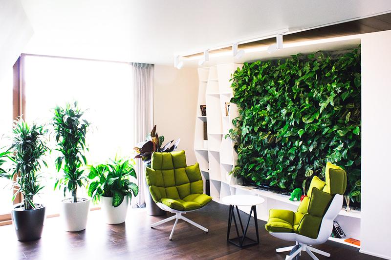 Отлично смотрится стена из живых растений