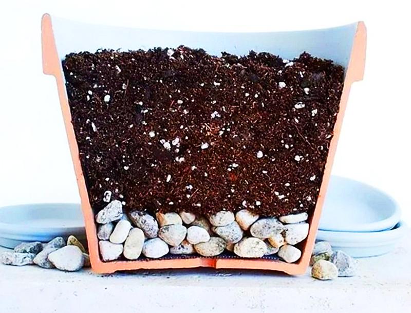 В кашпо необходимо сначала насыпать слой дренажа, затем рыхлую почвосмесь