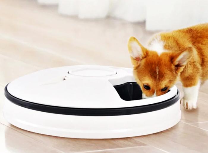 Следите за тем, чтобы во время еды щенок или котик не засунул в контейнер лапу