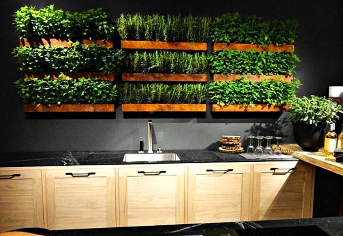 А вот вариант сочетания приятного с полезным – небольшая фазенда прямо на кухне. В вашем салате всегда будет свежая зелень
