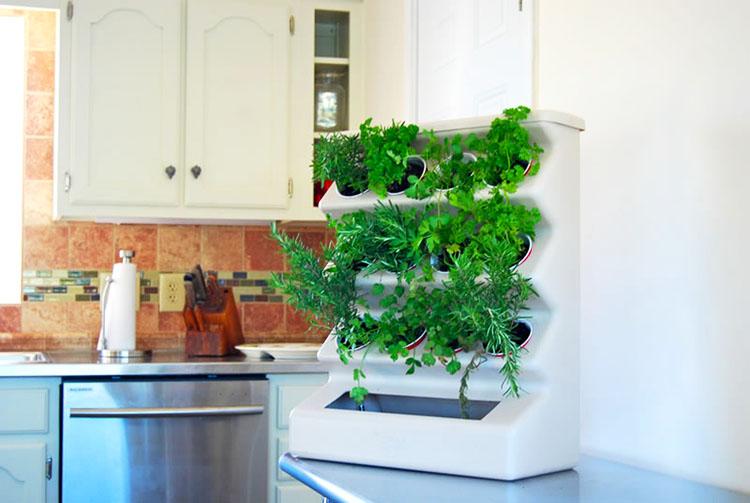 Для организации мини-сада могут подойти даже обычные пластиковые стаканчики. Вся суть в специальной системе полива