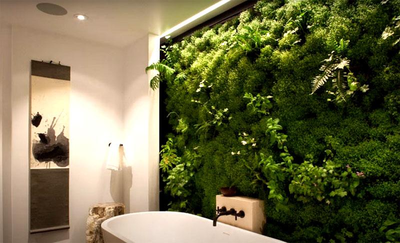 А между тем, именно во влажной атмосфере ванной комнаты растения могли бы чувствовать себя очень комфортно