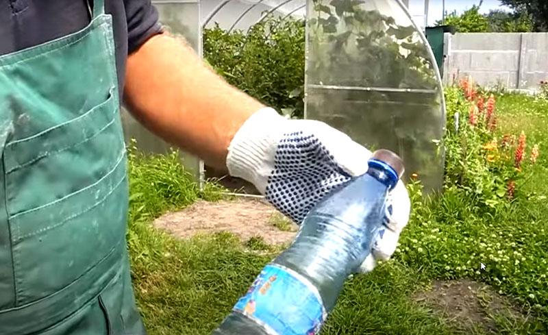 Спасаем сад и огород от тли
