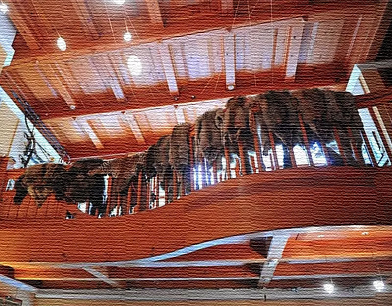 Деревянный потолок украшает паукообразная люстра