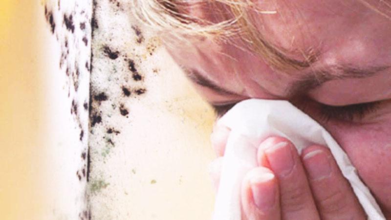 Особенно часто аллергия на плесень проявляется у детей, поэтому не забывайте регулярно проветривать помещение и осматривать тёмные углы во влажных зонах квартиры