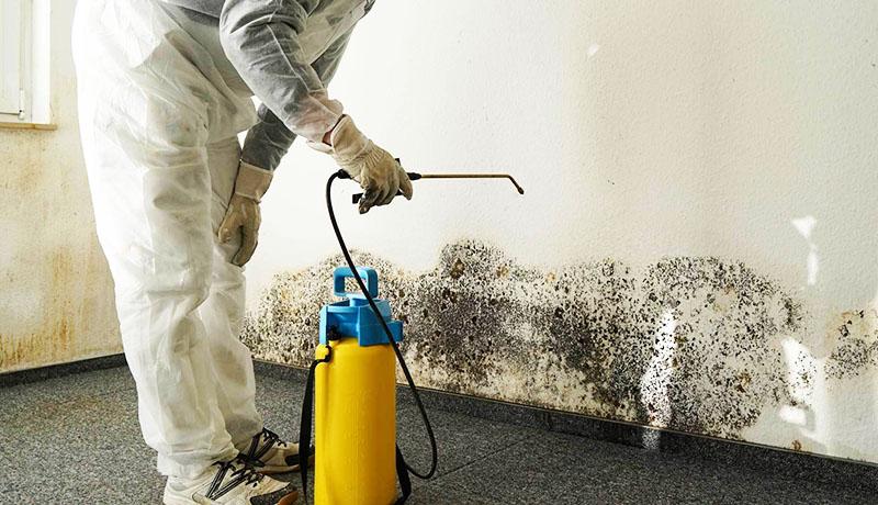Если вовремя не выполнить обработку помещения, вы можете заметить, что неприятный запах в квартире усиливается с каждым днём – это плохой признак, который нельзя игнорировать