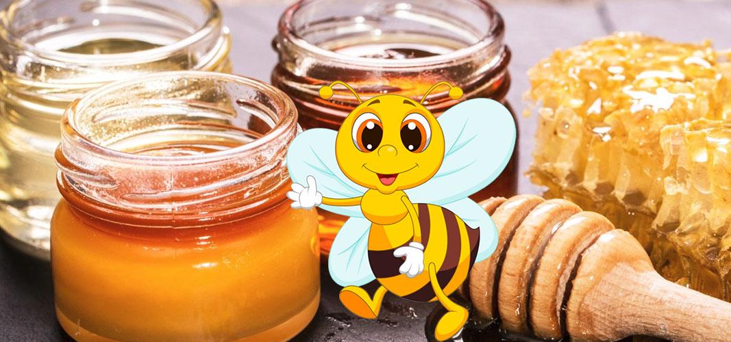 Как правильно хранить мед: рекомендации